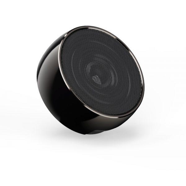 SPK-80 Speaker